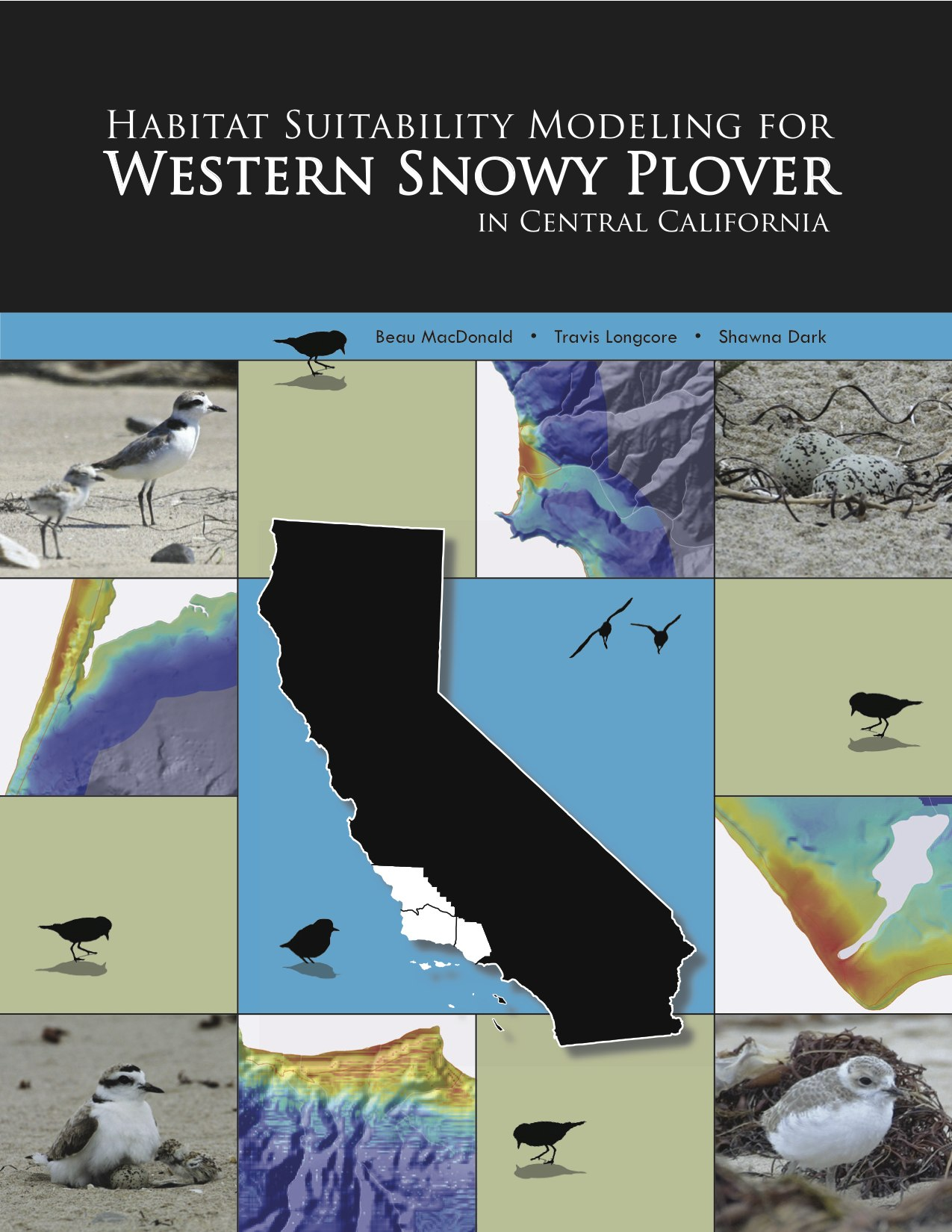 Western Snowy Plover Report Cover